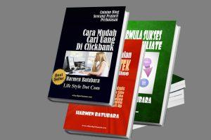 Memilih Model Bisnis Online, Ciptakan Peluangmu