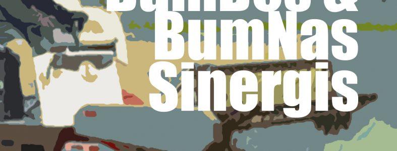 BumDes & BumNas Sinergis
